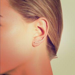 NWOT Sterling Forever CZ Brilliant Sphere Earrings